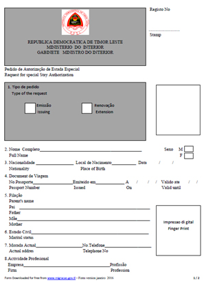 visa authorization form